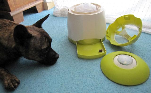 Dog Activity Memory Trainer von Trixie
