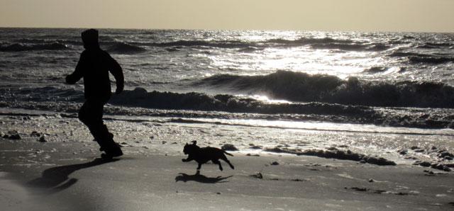 Strand von Noordwijk